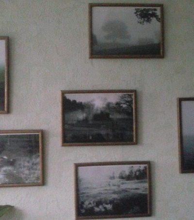 Gintarės Monkevičiūtės nuotraukų paroda Plinkšių bibliotekoje