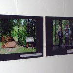 Nuotraukose - išvykų metu aplankytos rašytojų gyvenimo vietos, jų kūrybos skaitymai